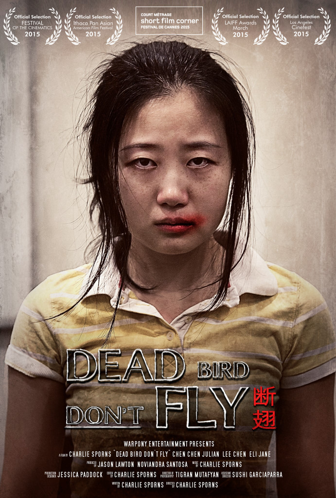 DBDF Poster 03 28 15 691x1024 Dead Bird Dont Fly (2015) short film review